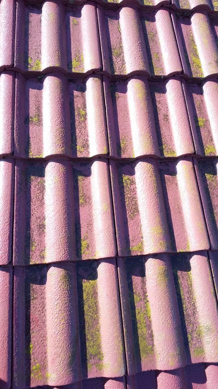 幸手市/瓦屋根塗装前の補修の様子をご紹介いたします!