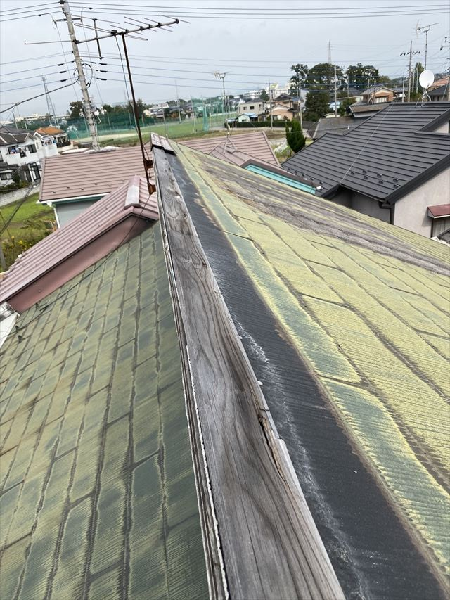 台風19号雨漏り