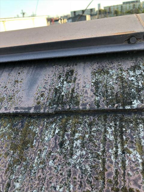 屋根棟板金部分浮き