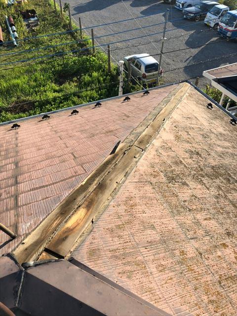 屋根棟板金破損