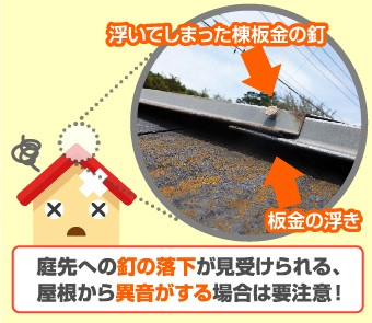 庭先への釘の落下が見受けられる、屋根から異音がする場合は要注意!